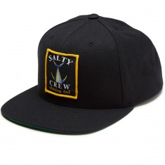 Salty Crew Chasing Tail Patched Hat - Black