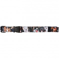 Acembly Waist Pack Belt - Photo Real Dogs