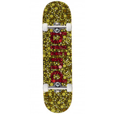 Blind Color Blind RHM Skateboard Complete - 8.25""