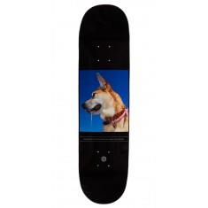 Habitat O'Rourke Photo Collection Small Skateboard Deck - 8.00""