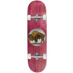 Toy Machine Provost Bison Skateboard Complete - 8.50""