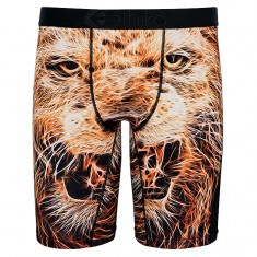 Ethika Pride Boxer Brief - Brown