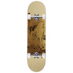 Real Wair Zodiac LTD Skateboard Complete - 8.18""