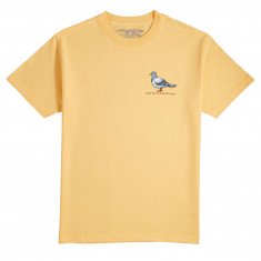 Anti-Hero Lil Pigeon T-Shirt - Squash