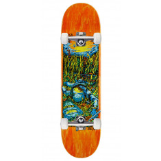 Real Brock Bright Future Skateboard Complete - 8.06""