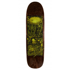 Real Brock Bright Future Skateboard Deck - 8.60""