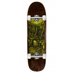 Real Brock Bright Future Skateboard Complete - 8.60""