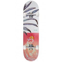 Chocolate Anderson Skidul Tropicalia Skateboard Complete - 8.50""