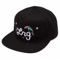 LRG Birds Of A Feather Hat - Black