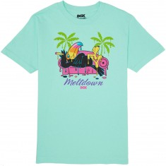 DGK Meltdown T-Shirt - Mint