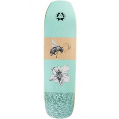 Welcome Adaptation on Banshee Skateboard Deck - Teal - 8.6
