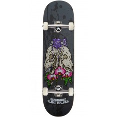 Birdhouse Shrine Skateboard Complete - Clint Walker - 8.475
