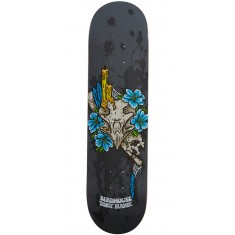 Birdhouse Shrine Skateboard Deck - Tony Hawk - 8.0