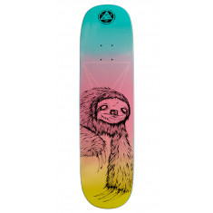 Welcome Sloth on Amulet Skateboard Deck - Rainbow - 8.125""