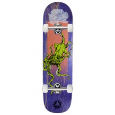 Welcome Bactocat on Big Bunyip Skateboard Complete - Purple Stains - 8.50""