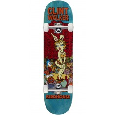 "Birdhouse Walker Vices Skateboard Complete - 8.125"" - Teal Stain"