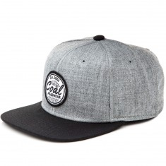 Coal The Classic Hat - Heather Grey
